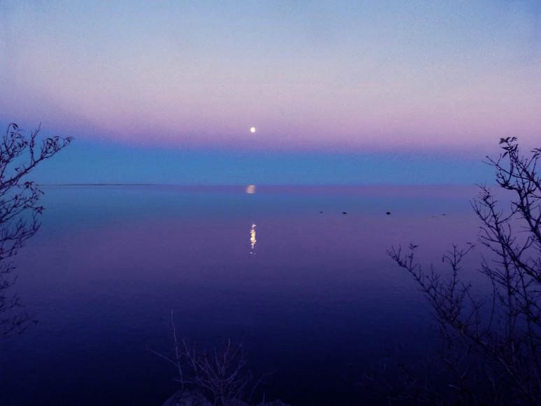 moonbaltic-1010877